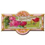 French Chic Style Rose Metal Toilet Toilette Sign